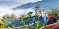Yuanyang Terraces