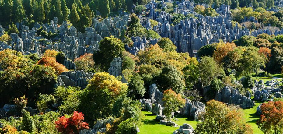 Kunming - Stone Forest